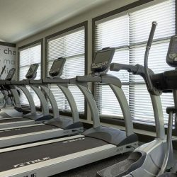 Series of treadmills at an apartment fitness center - Elements at Prairie Center