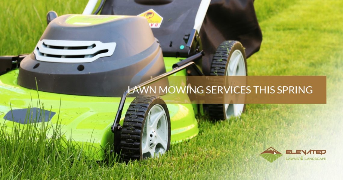 Landscaping Services Fort Collins Lawn Mowing Services This Spring