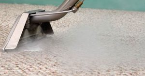 The Importance of Professional Carpet Cleaning | Elite Clean Steamers