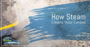Steam Carpet Cleaning Indianapolis: How Steam Cleans Your Carpet