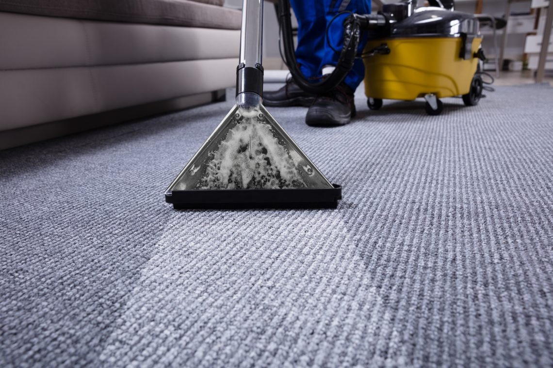 clean carpet, drying
