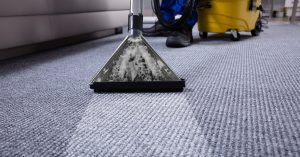 clean carpet, drying