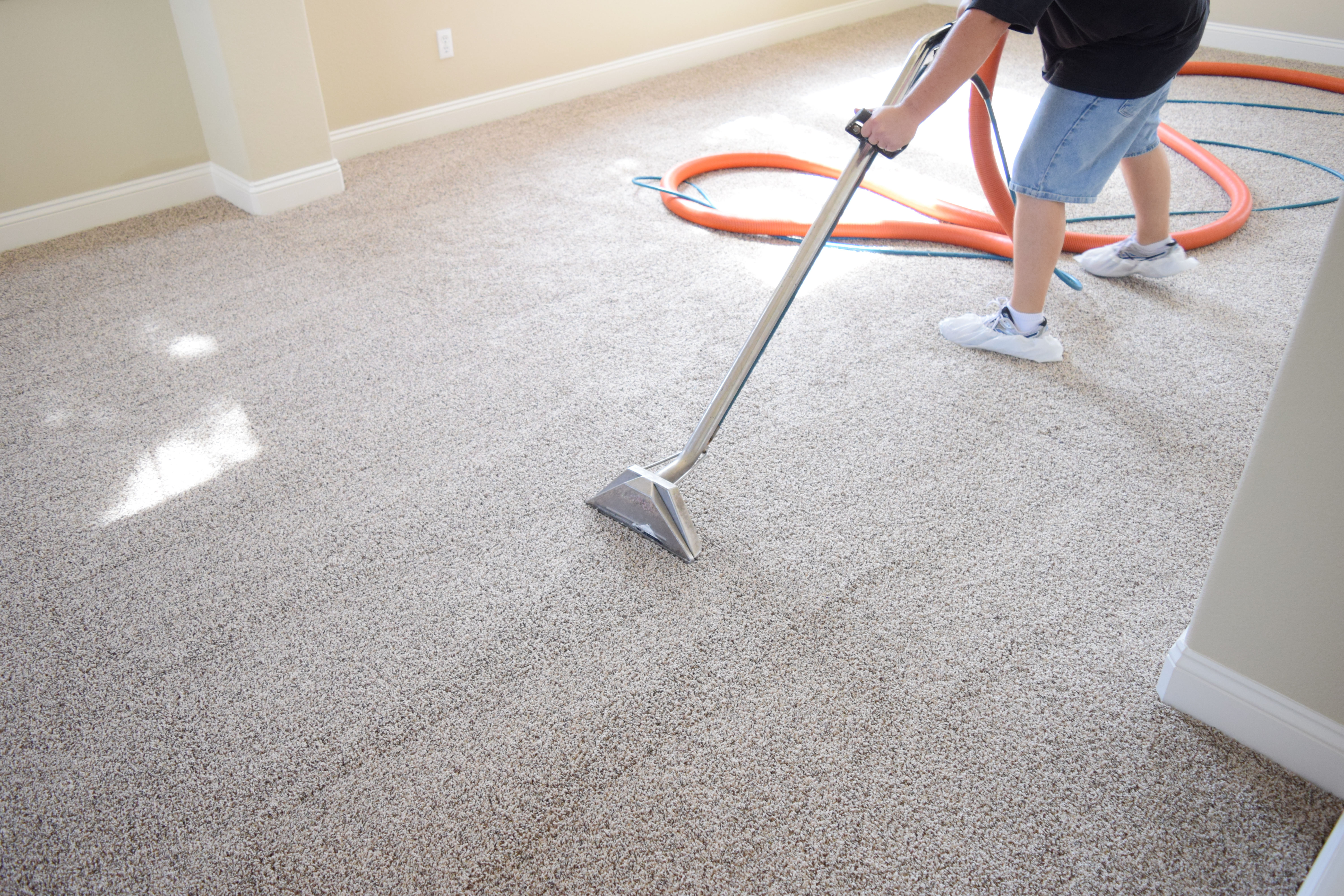 Carpet Cleaning Services Indianapolis IN