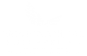 EMS Financial Enterprises