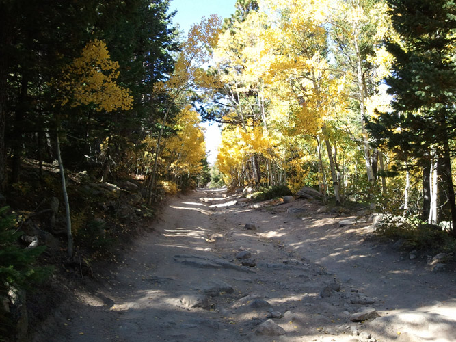 Fall off road with Estes Park ATV Rentals