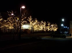 exterior holiday decorating service