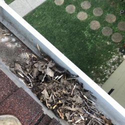 Nashville gutters that need gutter cleaning service
