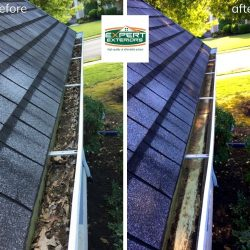 Professional gutter cleaning service can clean out leaves