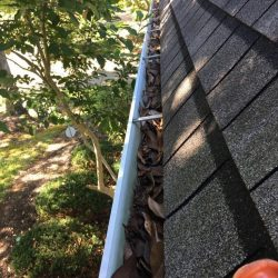Nashville gutters that need professional gutter cleaning service