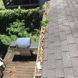 Nashville gutter cleaning services can clean out leaves and debris
