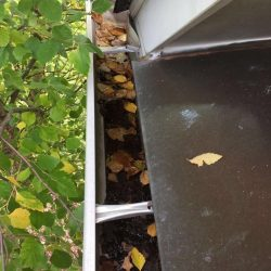 Gutters that need professional gutter cleaning in Nashville