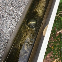 Dirty gutters that need gutter cleaning experts