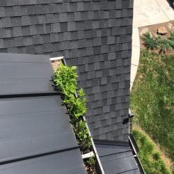 Professional gutter cleaning and repair in Nashville