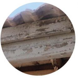 Rotting soffit and fascia board