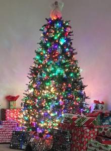 Xmas_Tree_15_Sm