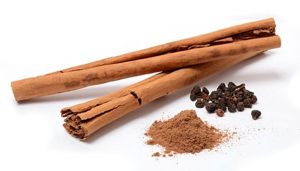 Cinnamon is a Good Natural Pest Control Alternative