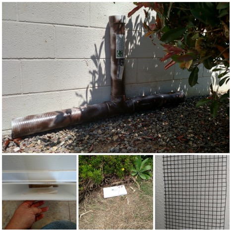snake-traps-wildlife-removal-services