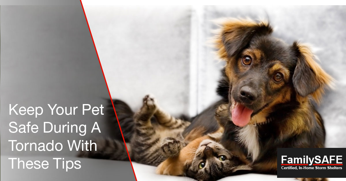 Learn how to keep pets safe with a custom tornado shelter