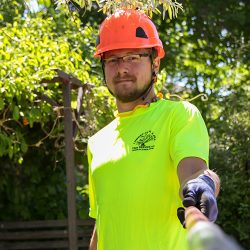 Tree Care Expert Holding Camera