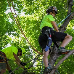 Two Tree Care Workers in Canopy