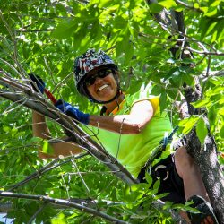 Tree Care Expert Smiling in Tree