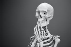 An anatomical reference model of a skeleton positioned to look as though it is stroking its chin in contemplation. Photo by Mathew Schwartz on Unsplash.