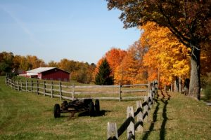 agricultural fence installation services in Arkansas and Oklahoma