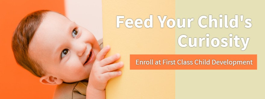 What to Expect From Our Preschool Child Development Program - curiosity 5b4766e4f1d59