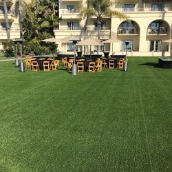 Turf Lawn at a Hotel - Five Star Turf Commercial