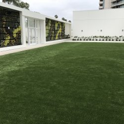 Turf Installation at Hotel Common Space - Five Star Turf Commercial