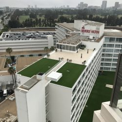 Artificial Grass at the Beverly Hilton - Five Star Turf Commercial