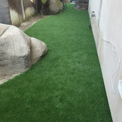 Turf Along Side of Home - Five Star Turf Commercial