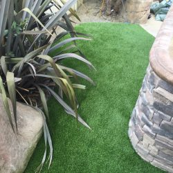 Artificial Turf in Residential Backyard - Five Star Turf Commercial