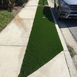 Turf Along Municipal Sidewalk - Five Star Turf Commercial