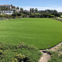 Large Artificial Grass Field - Five Star Turf Commercial