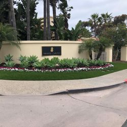 Artificial Grass Installation at The Ritz Carlton - Five Star Turf Commercial