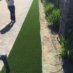 Landscaping Artificial Grass Near Pathway - Five Star Turf Commercial