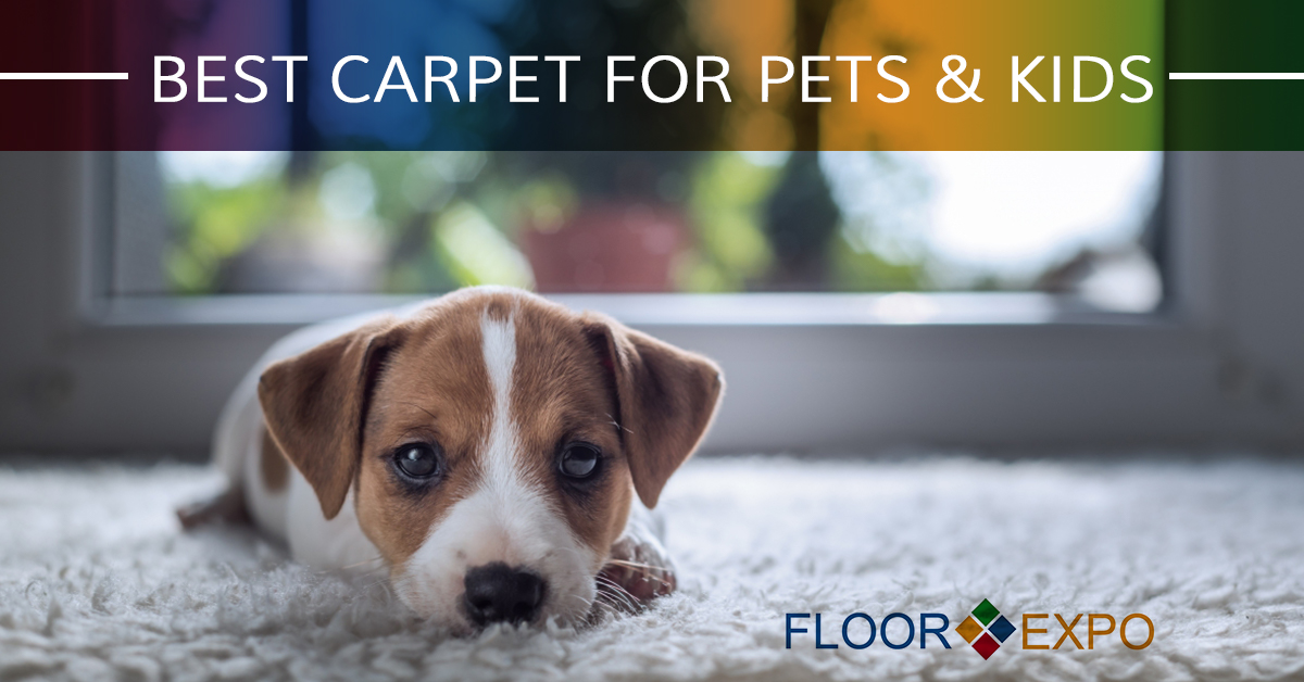 carpet installers fairfield best carpet for pets kids. Black Bedroom Furniture Sets. Home Design Ideas