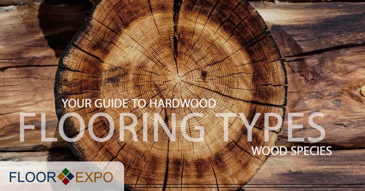 Hardwood Flooring Installers New Jersey Wood Species