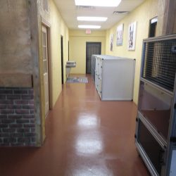Commercial epoxy coating by FloorEver Solutions
