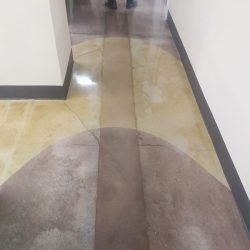 Tan polished concrete by FloorEver Solutions in Jacksonville