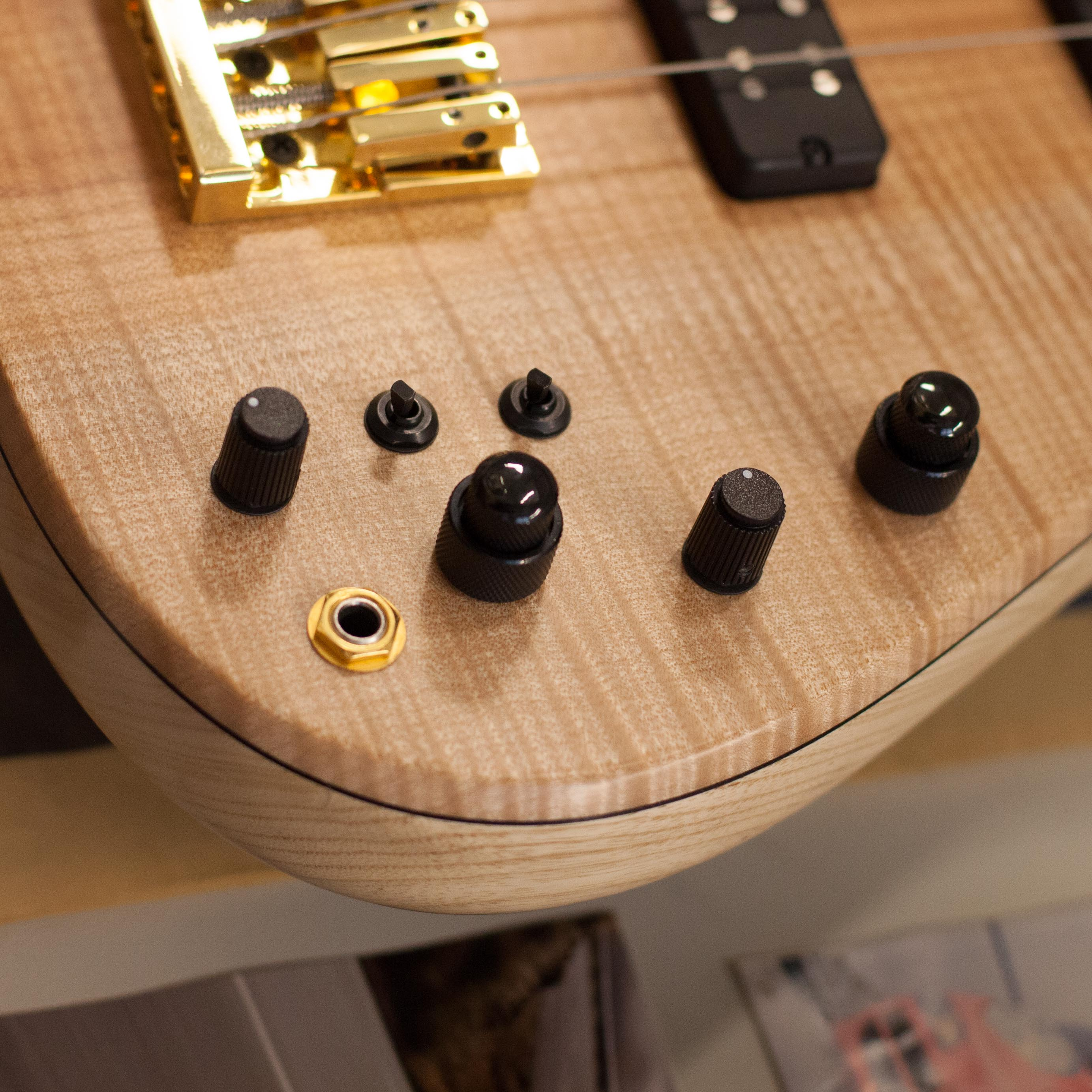 Bass Guitar Output Jack Closeup