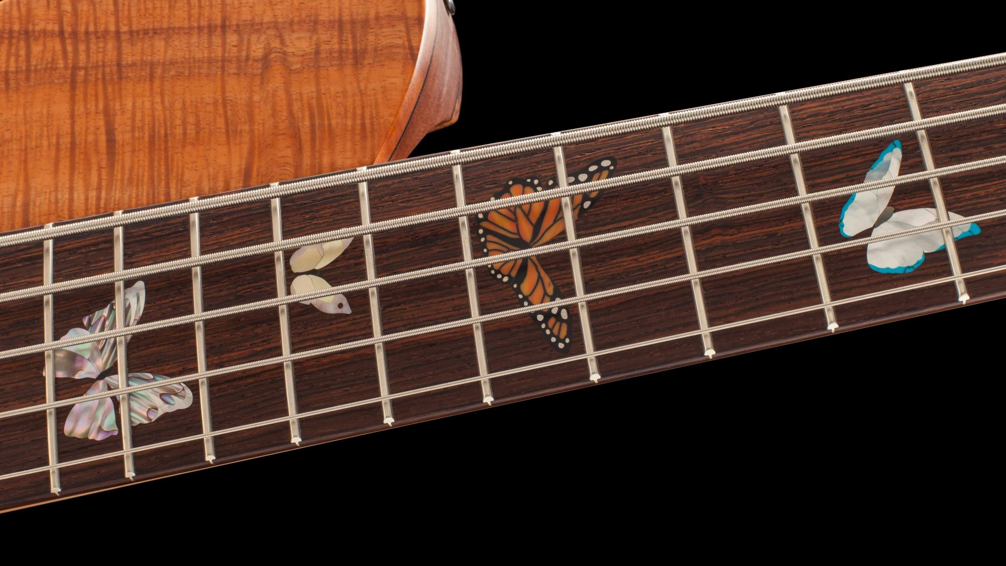 Inlaid Butterflies on Bass Neck Closeup