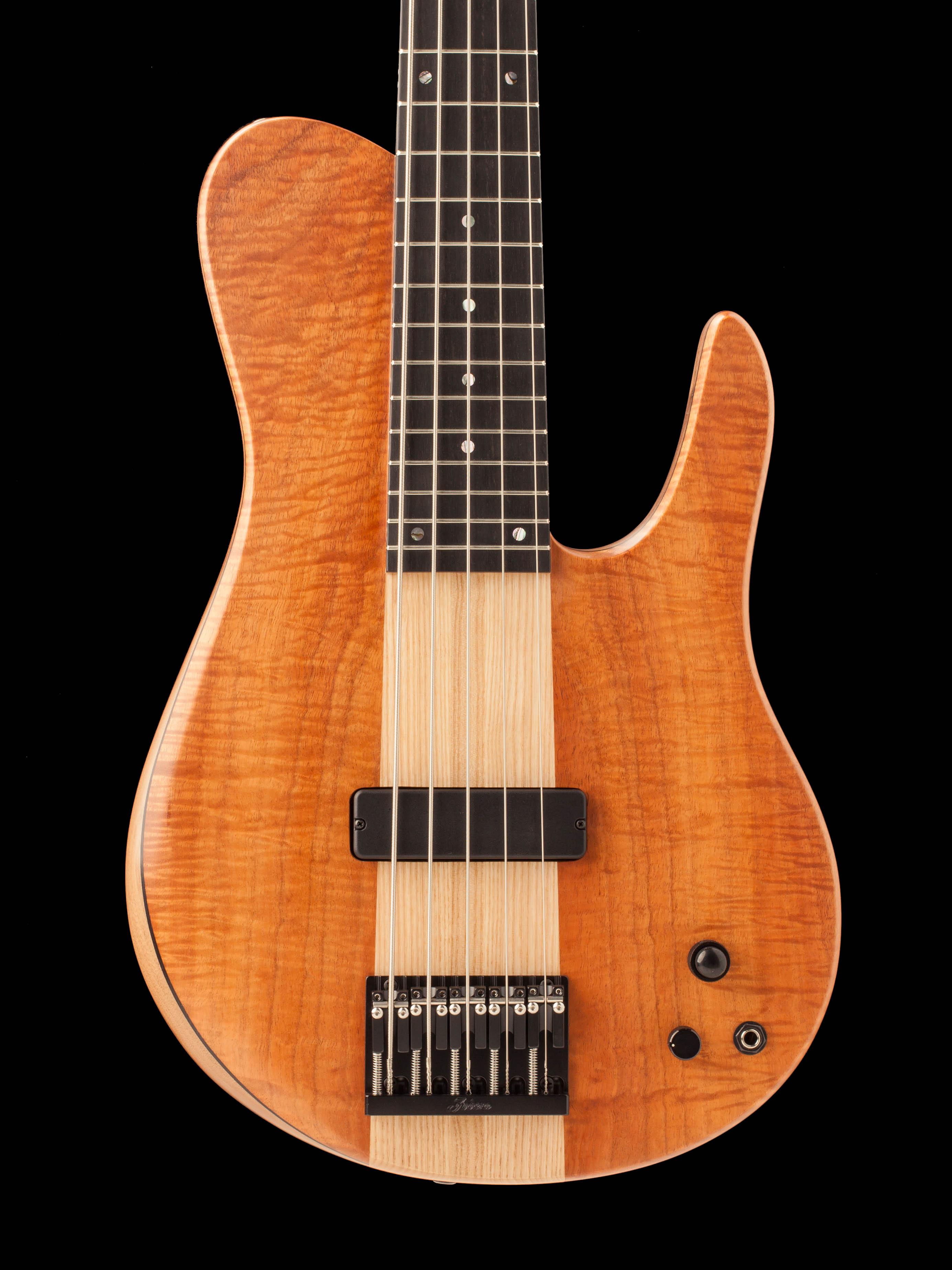 Five-String Custom Hybrid Guitar