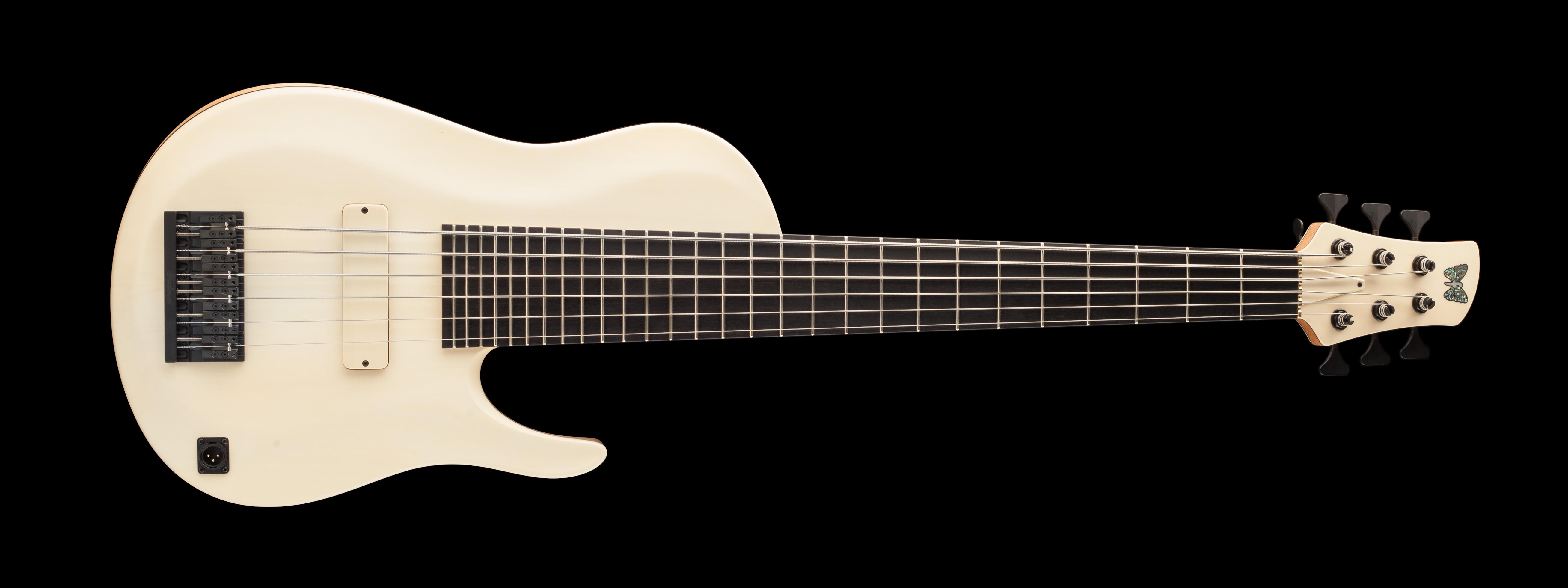 Custom Hybrid Guitar