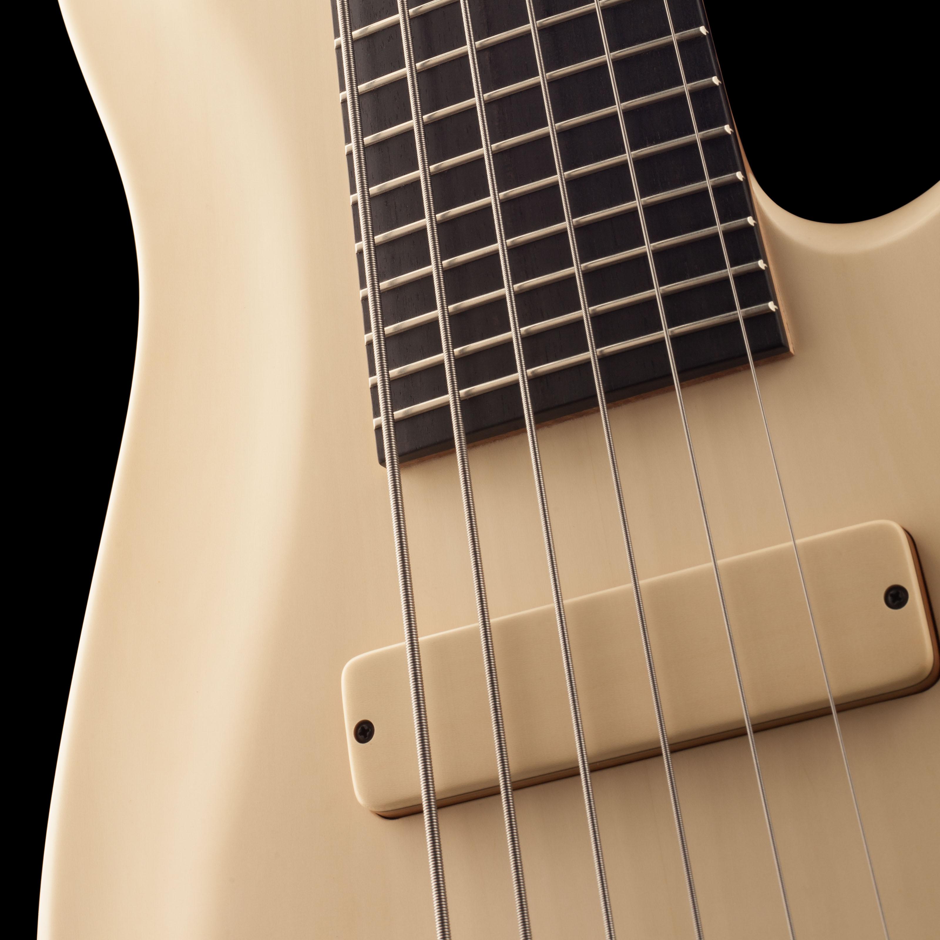 Five-String Guitar Pickup