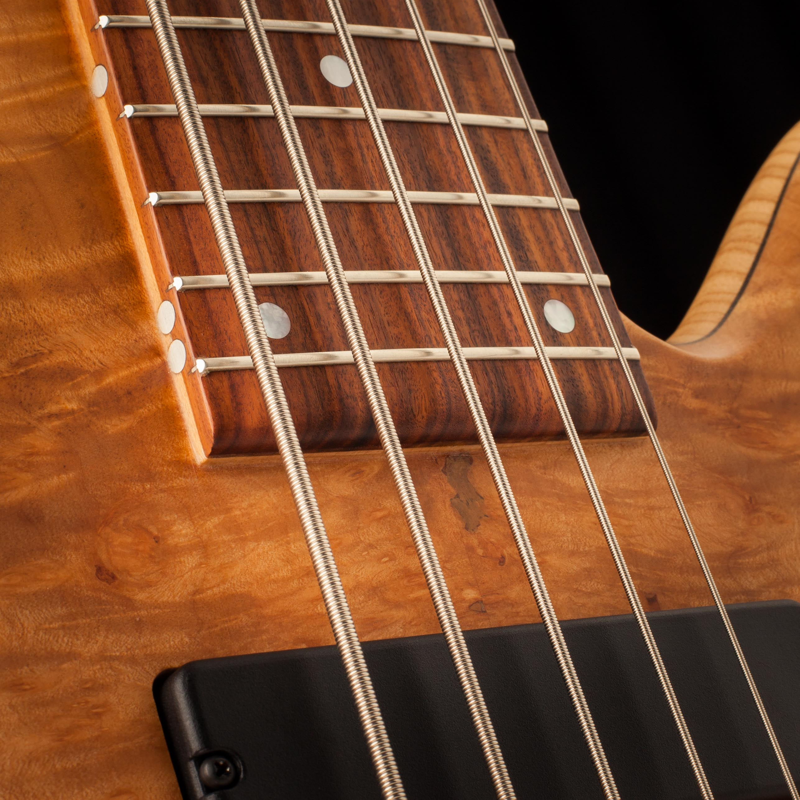 5-String Fodera Bass Frets Closeup