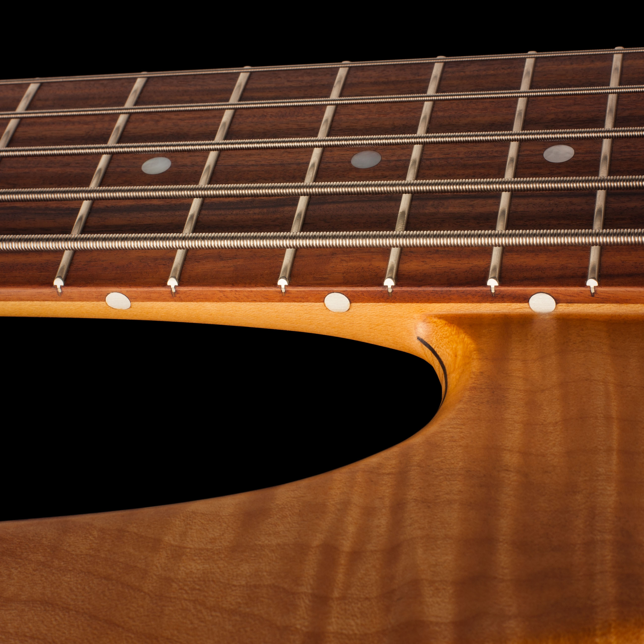 5-String Fodera Bass Strings Closeup