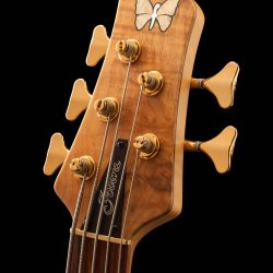 5-String Fodera Bass Headstock From Front