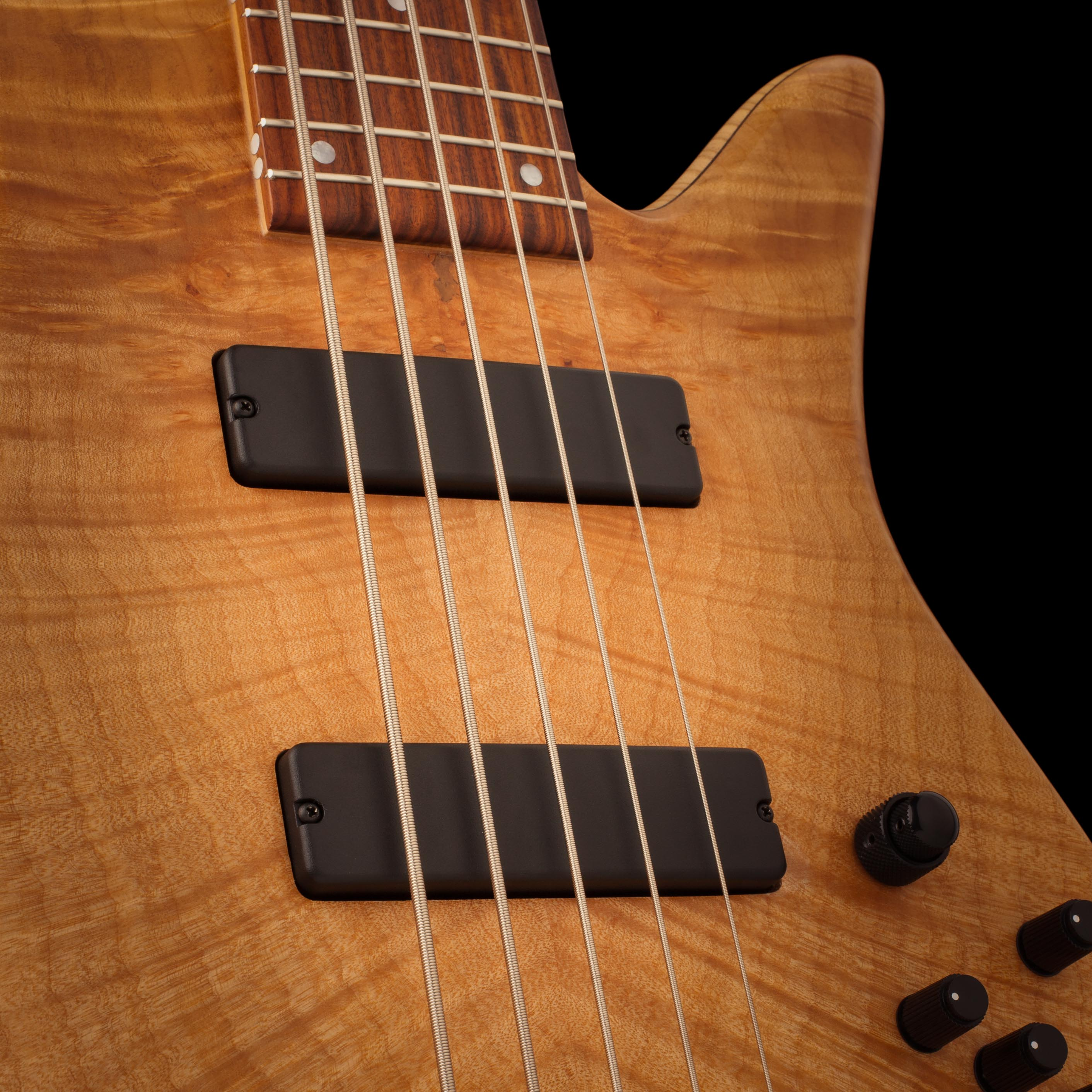 Fodera Bass Guitar Pickups Closeup
